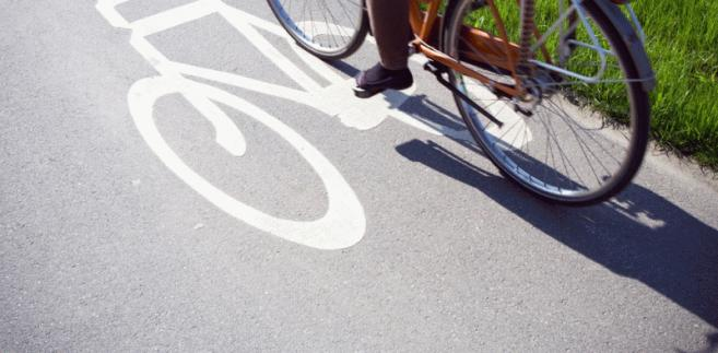 Ścieżka rowerowa. fot. shutterstock.com