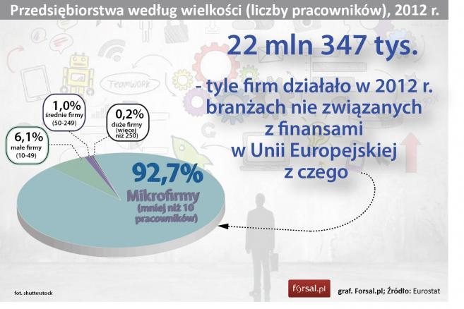 Przedsiębiorstwa według wielkości (liczby pracowników), 2012 r.