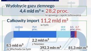 Polski rynek gazu (infografika Dariusz Gąszczyk)