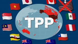 TPP (Trans-Pacific Partnership)