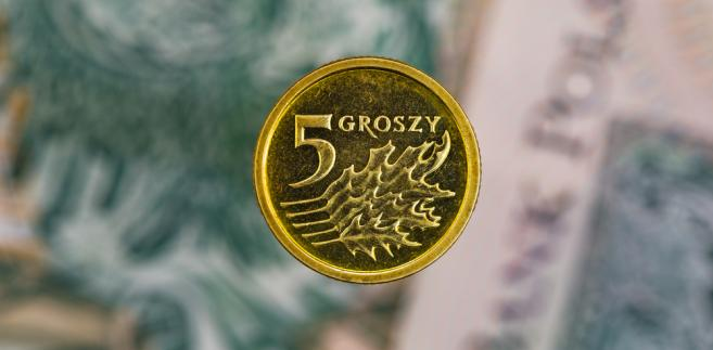 grosze, pieniądze, moneta