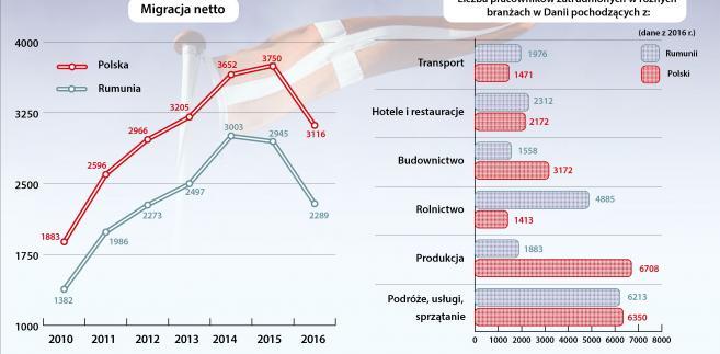 Migracja netto i zatrudnienie cudzoziemców w Danii