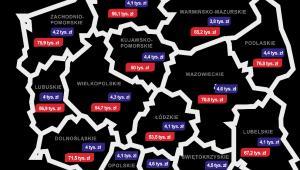 Średnie zadłużenie Polaków w firmach pożyczkowych i bankach