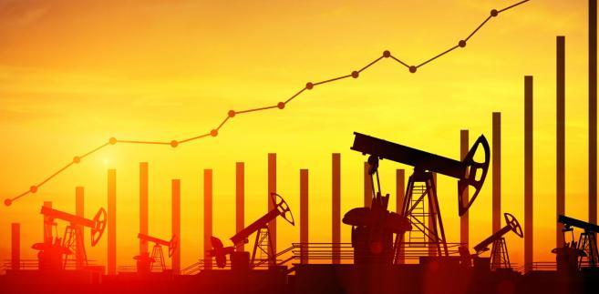 OPEC chce podwyższyć dostawy ropy. Surowiec w USA droższy o dolara