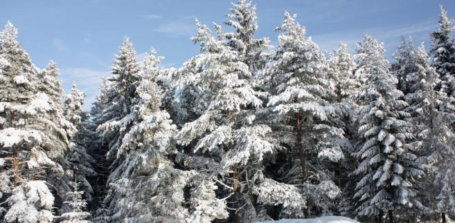 Ferie zimowe 2018 - Beskidy