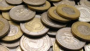 Polski złoty.